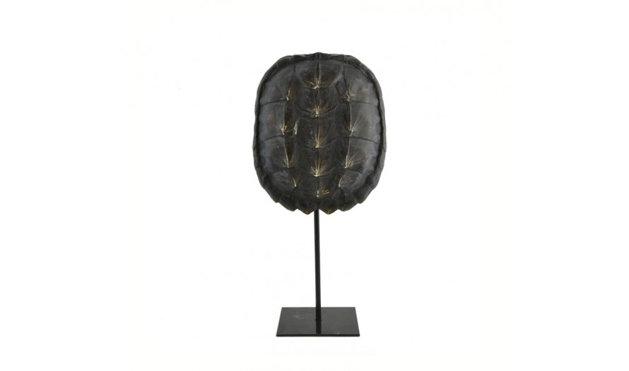 Oceania Turtle Shell On Stand