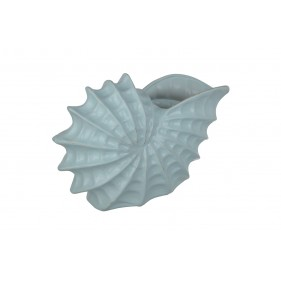 Camelia Decorative Sea Shell