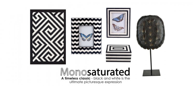 Monosaturated